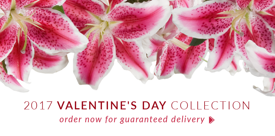 Freytag's Florist in Austin delivers Valentine's Day flowers with same-day flower delivery on all arrangements throughout the Austin TX Metro, including Round Rock and Cedar Park